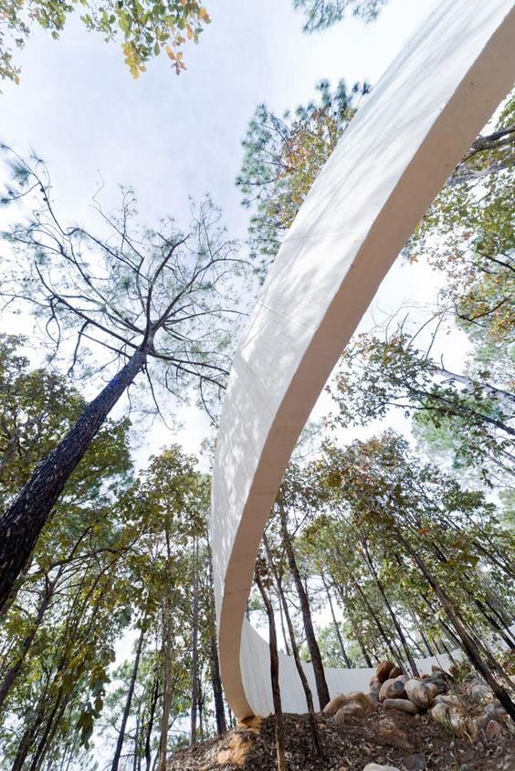 landschap-landscape-landart-wood-bos