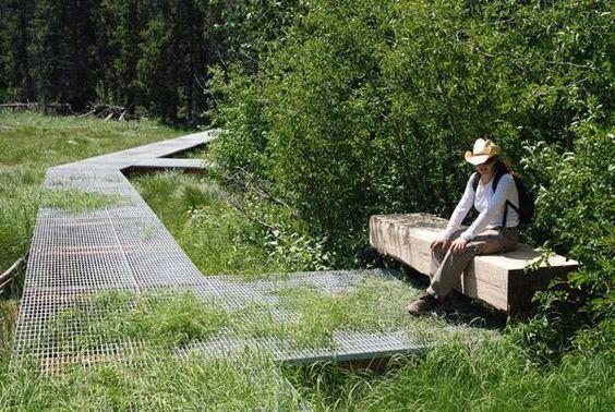 public space-publieke ruimte-landscape-landschapspark-natuur-zwevend pad-lauferrooster-zitbank