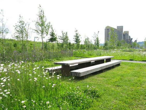 public space-publieke ruimte-landscape-natuurlijk-natural-bloemenweide-picknickbank