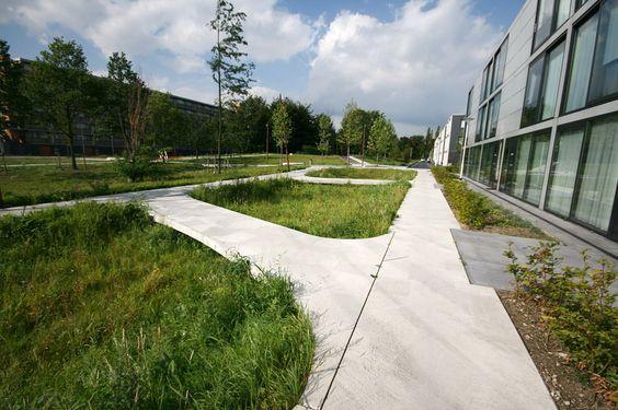 public space-publieke ruimte-park-parc-wadi-waterinfiltrationzone