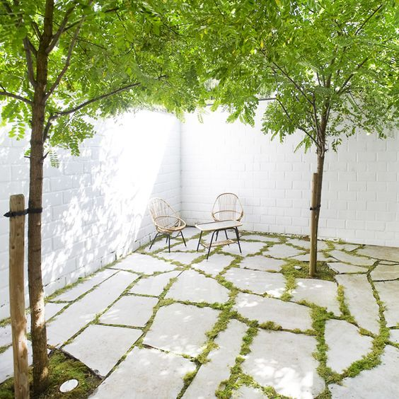 tuin-garden-patio-flagstones