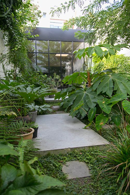 tuin-garden-patio-green-concrete-beton-subtropisch-jungle