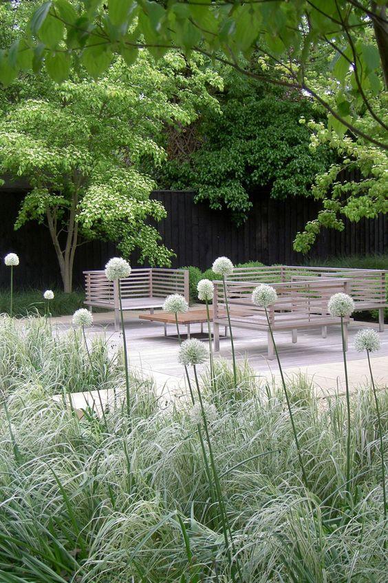 tuin-garden-terras-terrace-meerstammige