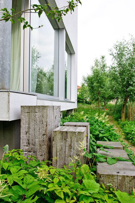 tuin-garden-trap hout-planten