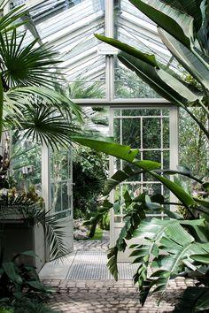 tuin-garden-veranda-serre