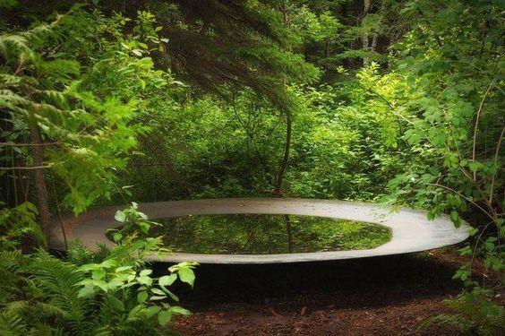 tuin-garden-waterschaal-bos-natuur